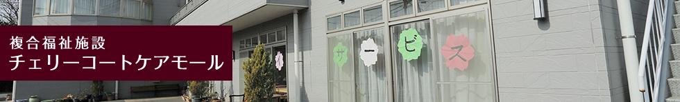 複合福祉施設 チェリーコートケアモール